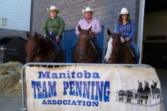 MTPA FINALS Brandon, Manitoba September 19 & 20, 2015 # 7 CLASS WINNERS L - R Emma Watson, Ken Dalgliesh, Amy Brown